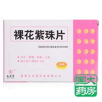 九芝堂 裸花紫珠片 0.5g*12片*2板