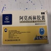 青帝 阿莫西林胶囊 0.5g*20粒